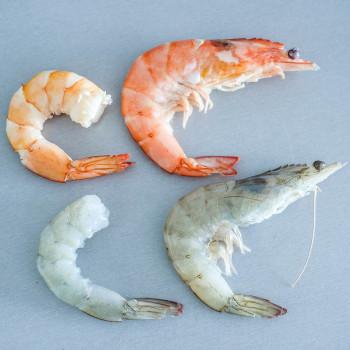 Krevety - garnáti, garnely, gambery, scampi? A fotonávod, jak je nejlíp očistit a oloupat