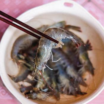 """Marinovaná kreveta """"vnudlích"""" na salátku ze zeleného manga aGia Negroni"""