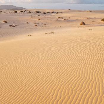 Las Dunas de Corralejo Fuerteventura